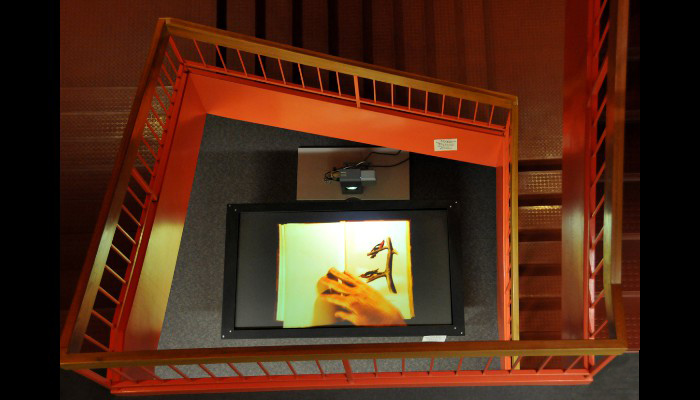 Stairwell view video table - Aububon's Birds of America